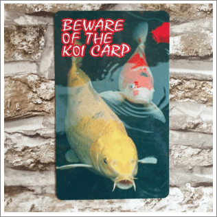 Beware Of The Koi Sign